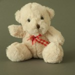 photo project - teddy bears