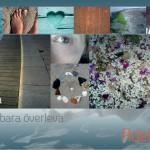 adelina_brochure5
